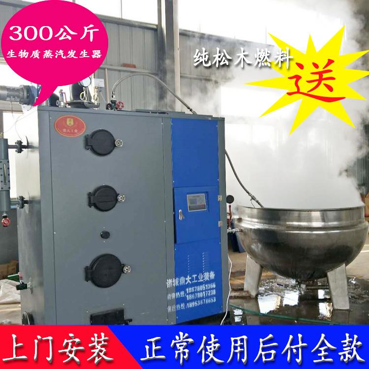 供应蒸汽发生器 立式300公斤 液化气环保低氮蒸汽发生器 现货直销