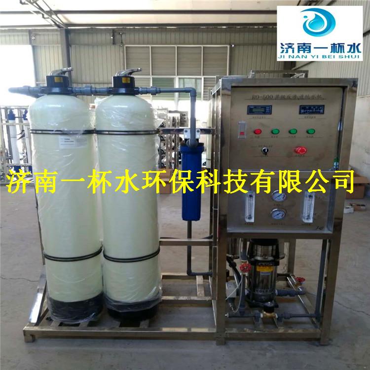 鑫鼎纯0.5吨/小时单机反渗透设备 纯水机设备  商用机设备