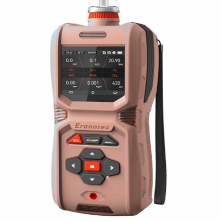 便携式复合气体检测报警仪厂家定制